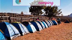Tudo sobre camping