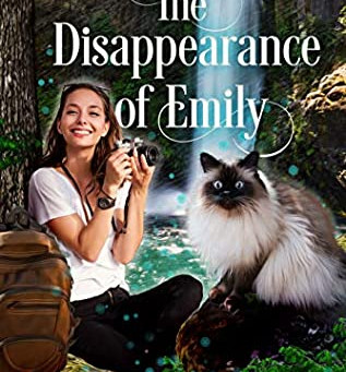 The Disappearance of Emily (Destiny Falls Mystery & Magic #2) by Elizabeth Pantley