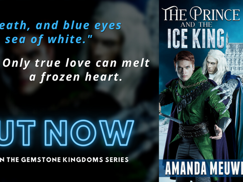 Blitz & #Giveaway: The Prince and the Ice King (Gemstone Kingdoms #1) by Amanda Meuwissen