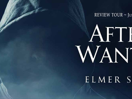 Tour & #Giveaway - After the Wanting by Elmer Seward
