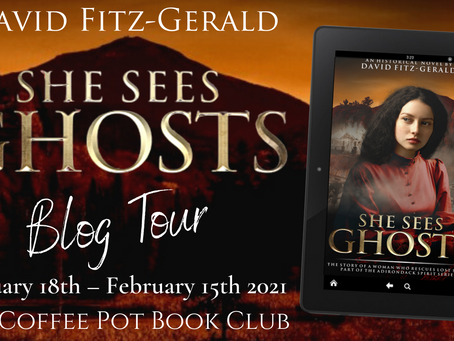 TOUR & REVIEW - She Sees Ghosts (Adirondack Spirit Series) by David Fitz-Gerald