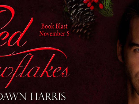 TOUR, REVIEW & #GIVEAWAY - Red Snowflakes by Kristal Dawn Harris