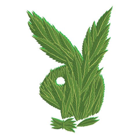 WEED WARRIORS // Playboy
