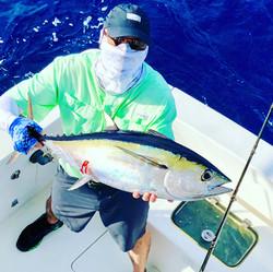 Key Largo blackfin tuna