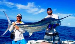 Key Largo blue marlin