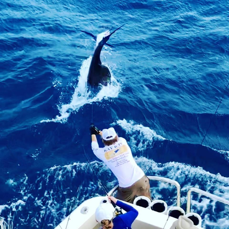Key Largo Fishing - Sailfish