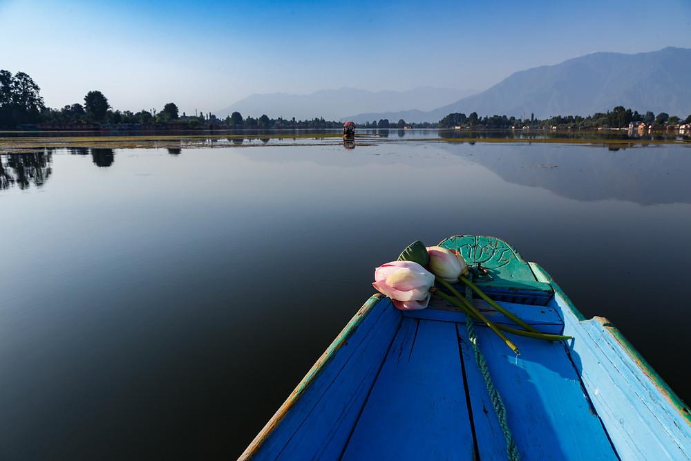 Озеро Нигин, Шринагар, Индия