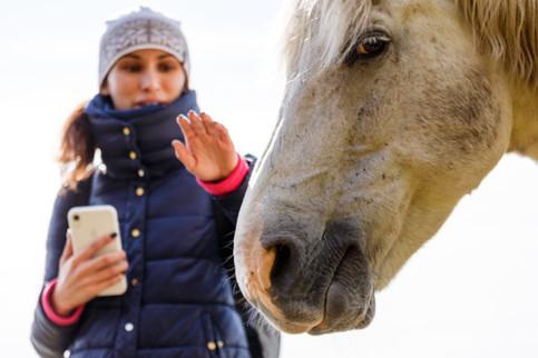 Общение с лошадками - обязательный пункт фототура в Шарыжалгай!