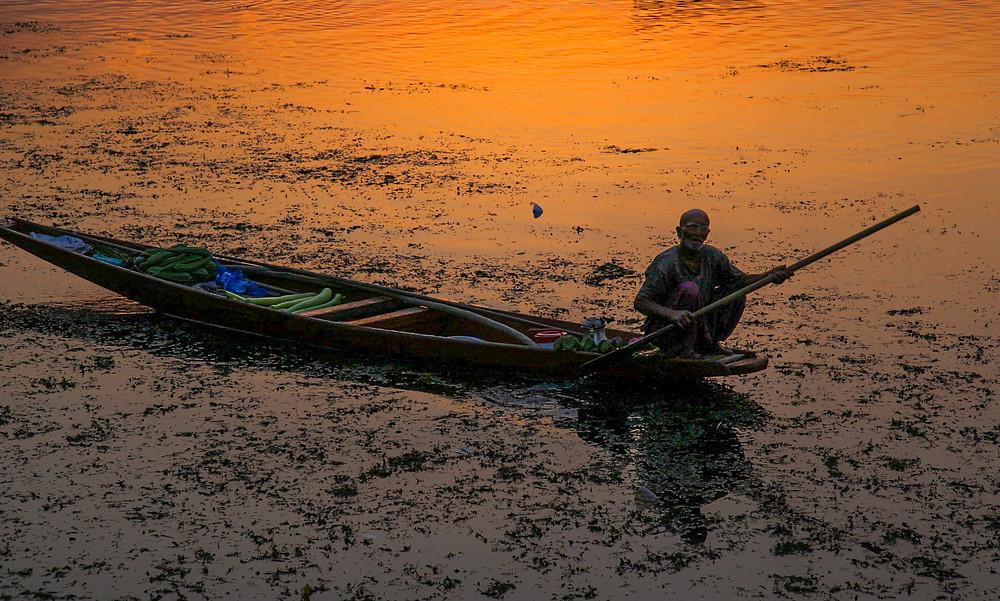 Лодочник на озере Дал, Шринагар, Кашмир, Индия