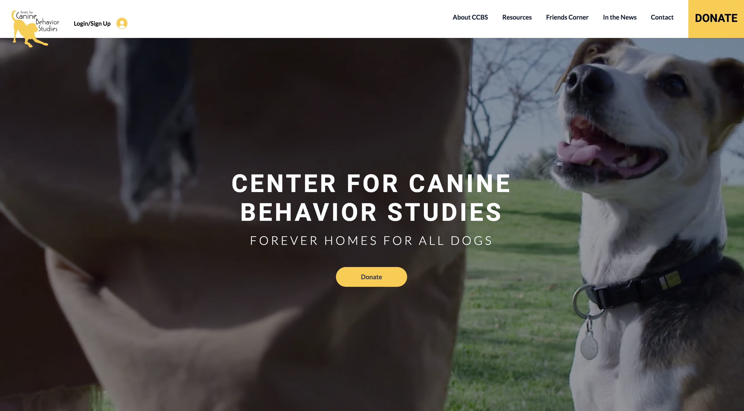 Center for Canine Behavior Studies
