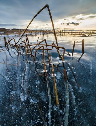 Застывшие травинки во льду Байкала