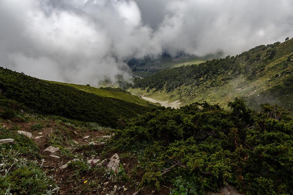 Дорога наверх, на замёрзшее озеро, Гульмарг, Кашмир, Индия