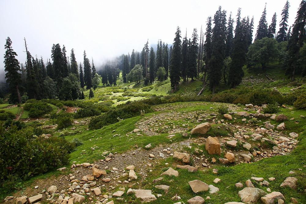 Дорога наверх, Гульмарг, Кашмир, Индия
