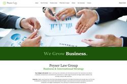 Peyser Law Group