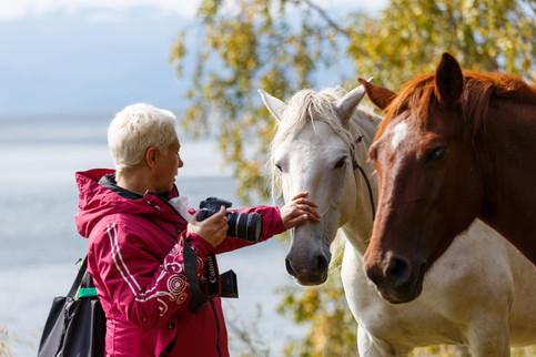 Лошадки в Шарыжалгае всегда просят поесть