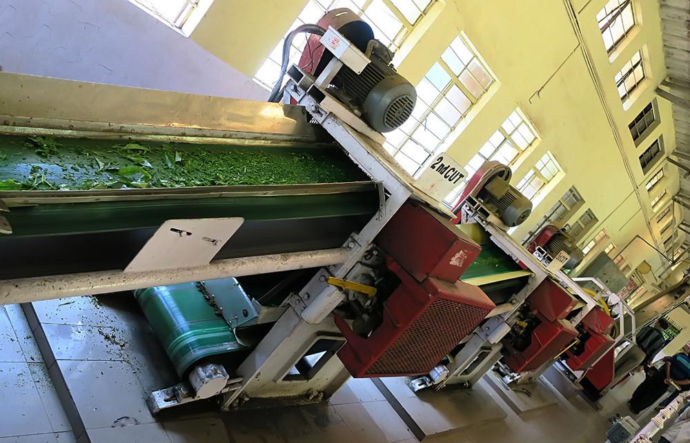 Музей и фабрика чая, Муннар, Керала, Индия