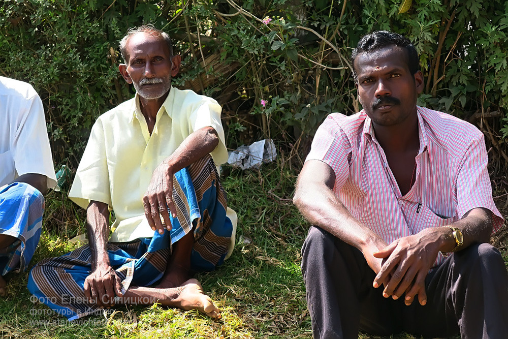 Местные жители, Муннар, Керала, Индия