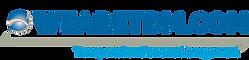 wearetdm logo.png