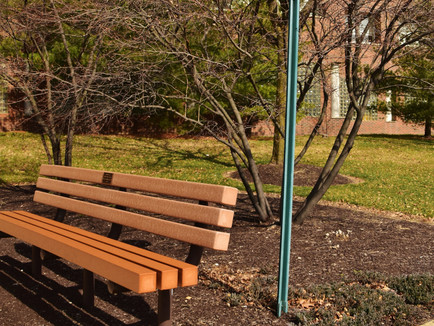 Why Sustainable Transportation Advocates Need to Talk About Seating - Streetsblog