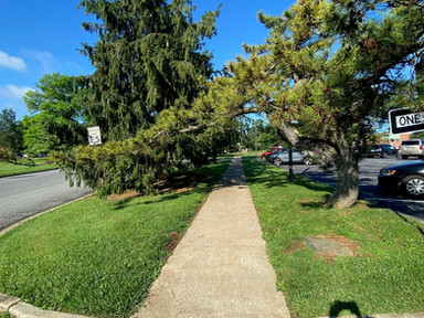 Lower-income neighborhoods have fewer trees, and that's a problem for walkability -Fast Company