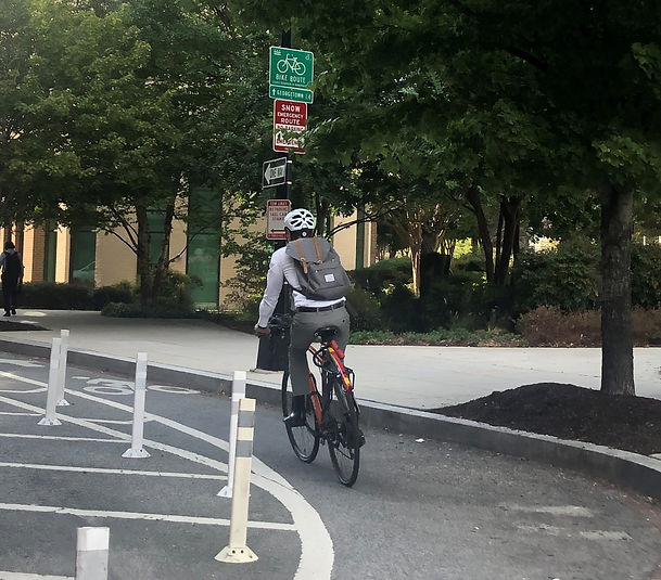 Biking - Protected Bike Lane - Copy.jpg