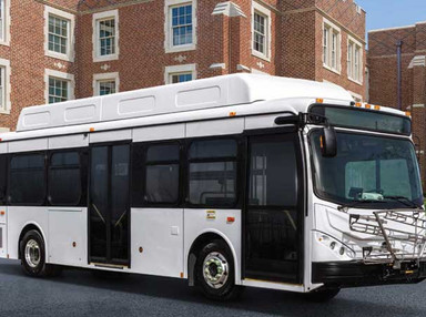 Los Angeles orders 130 BYD electric buses in biggest US order to date - The Driven