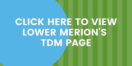 LMT TDM Page.png