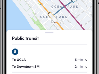 Lyft's New App Features Real-Time Public Transit Info - CityLab