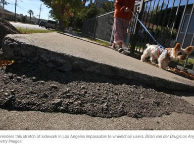 The High Cost of Bad Sidewalks - CityLab