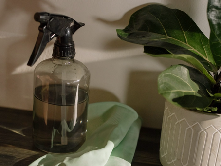 Featured in Zero Waste Lifestyle on Spring Cleaning