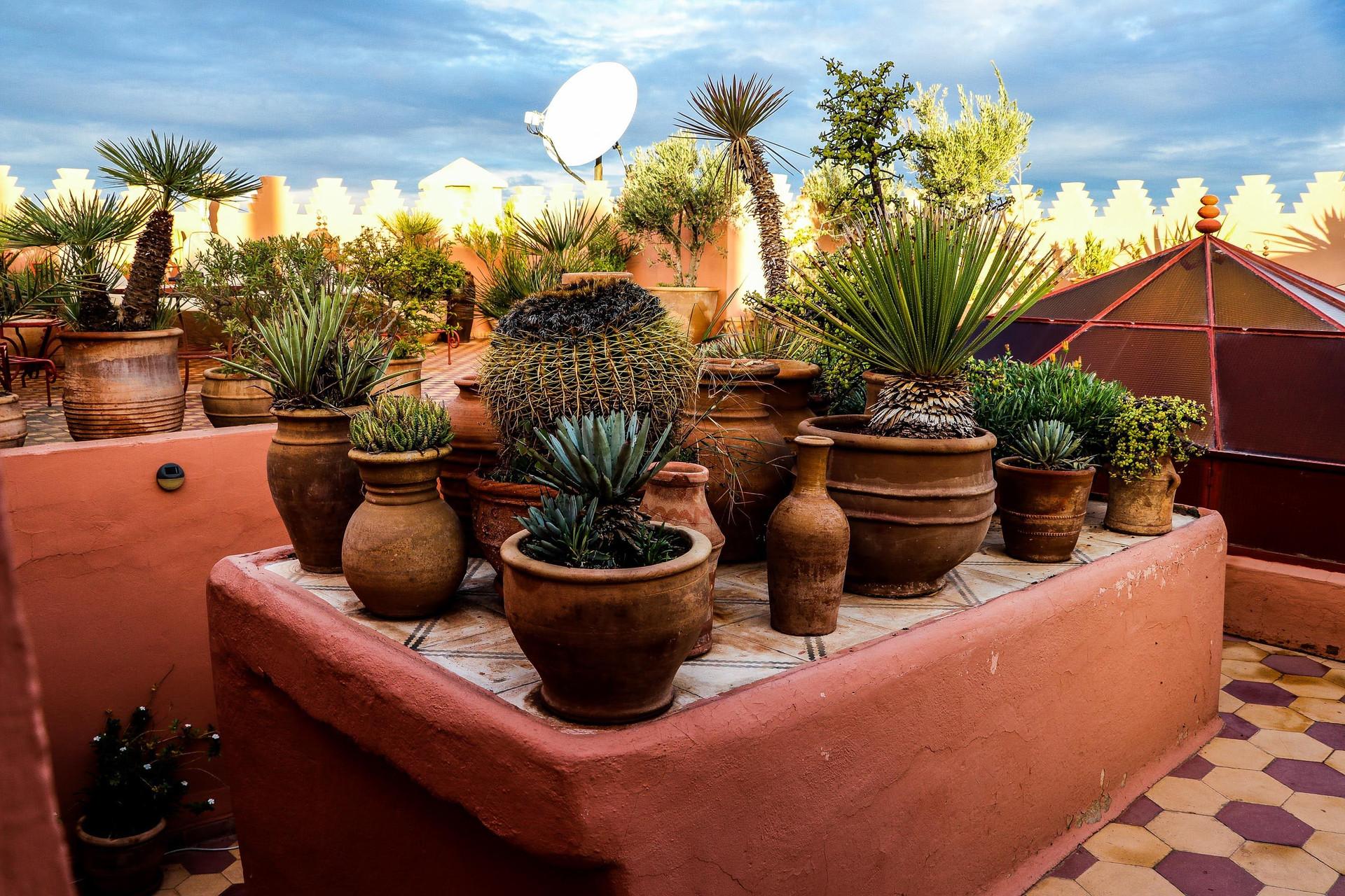 Marrakech | November 2018