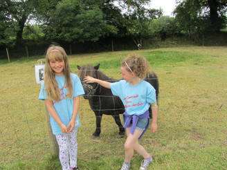 This Little Pony wanted to join the children at the Ógras Summer Camp in Enniscorthy!!