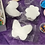 Thumbnail: SPRING Marshmallow Decorating Kits