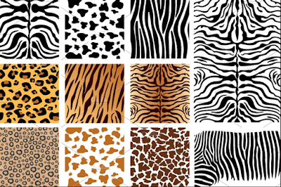 My #StyleDiary: Animal Print on the Prowl