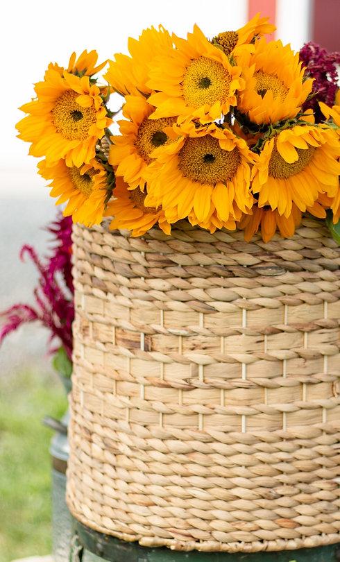 Kait Flower Truck-0012_edited.jpg