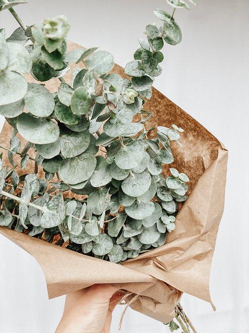ADD ON eucalyptus bundle