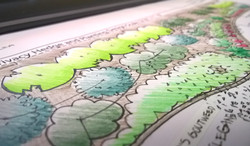 Planting Plan-hand rendered