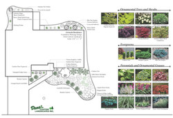 Foundation Planting Plan