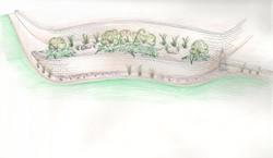 Retaining wall and planting sketch