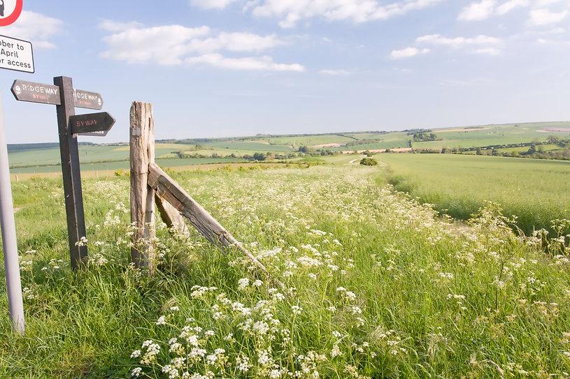 Countryside view near Salisbury
