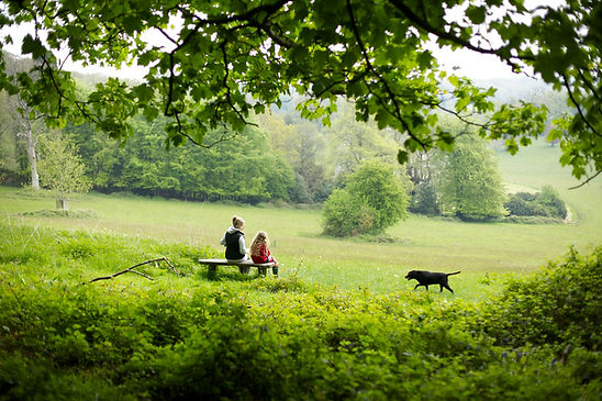 Family in Wiltshire countryside setting
