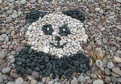 panda 3rd