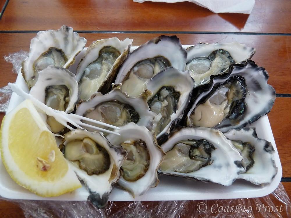dozen oysters from fish market Sydney Australia