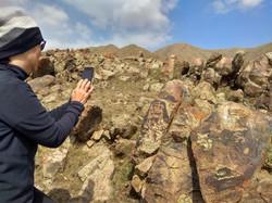 Day Tour to Ancient Petroglyphs