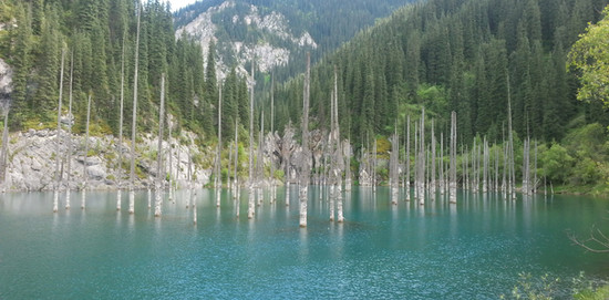 Kaindy Lake (Flooded Forest)
