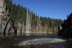 Tour to Lake Kaindy is a fairy tale!