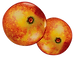 Camu Camu  Fruit_edited.png