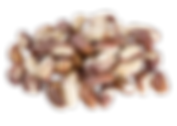 brazil-nut-seeds-natural-fundo.png