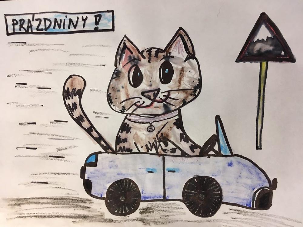 Když cestu řídí kočka