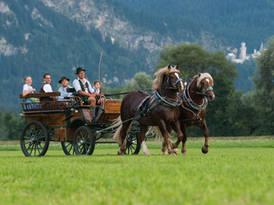Kutschfahrt in Schwangau